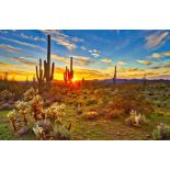 Southern Arizona Hospitality!