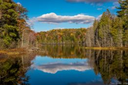 Small Town Living in Michigan's Southern Peninsula Outdoor Paradise!