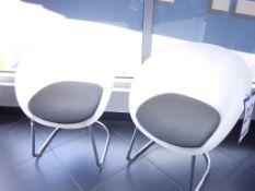 Fauteuils en polypropylène avec siège gris
