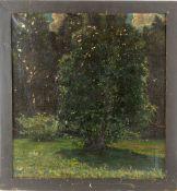 Hohlenberg, Johannes (Kopenhagen 1881-1960)Besonntes WaldstückSign. u. dat. (19)04.