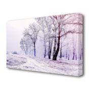 Beautiful Snowy Forest Landscape' Photographic Print on Canvas - RRP £24.99