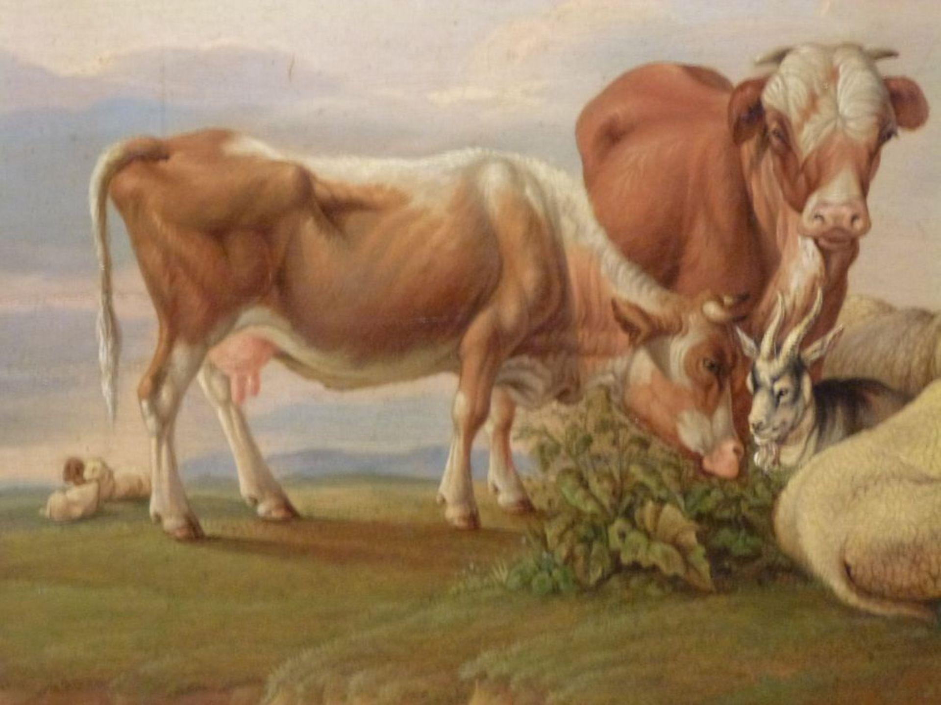 Auf der WeideGustav Jakob Canton, 1813-1885Öl/Eichenplatte, sign. G.Canton pinxit 1833, Kühe, Schafe - Bild 4 aus 7