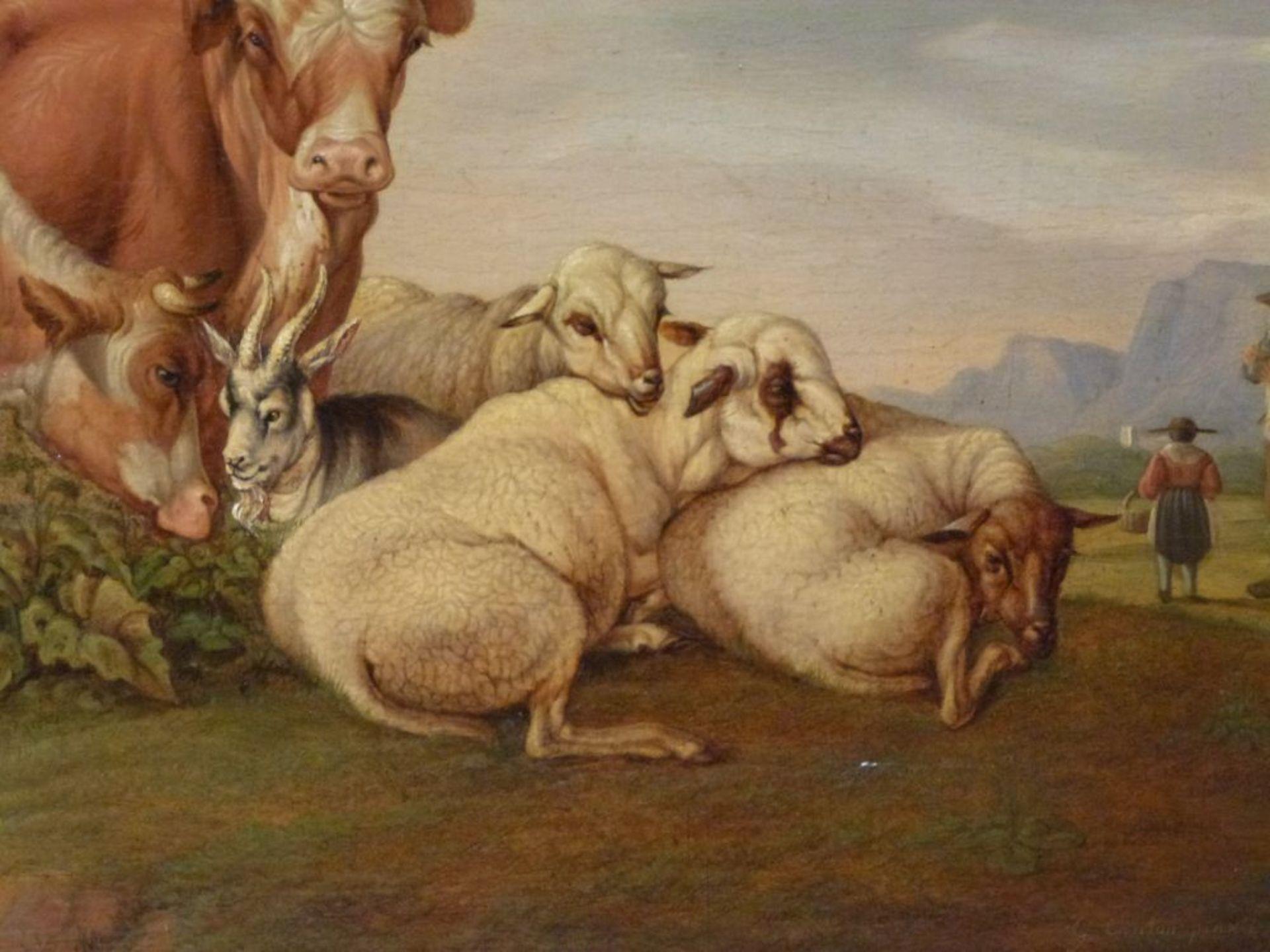 Auf der WeideGustav Jakob Canton, 1813-1885Öl/Eichenplatte, sign. G.Canton pinxit 1833, Kühe, Schafe - Bild 3 aus 7