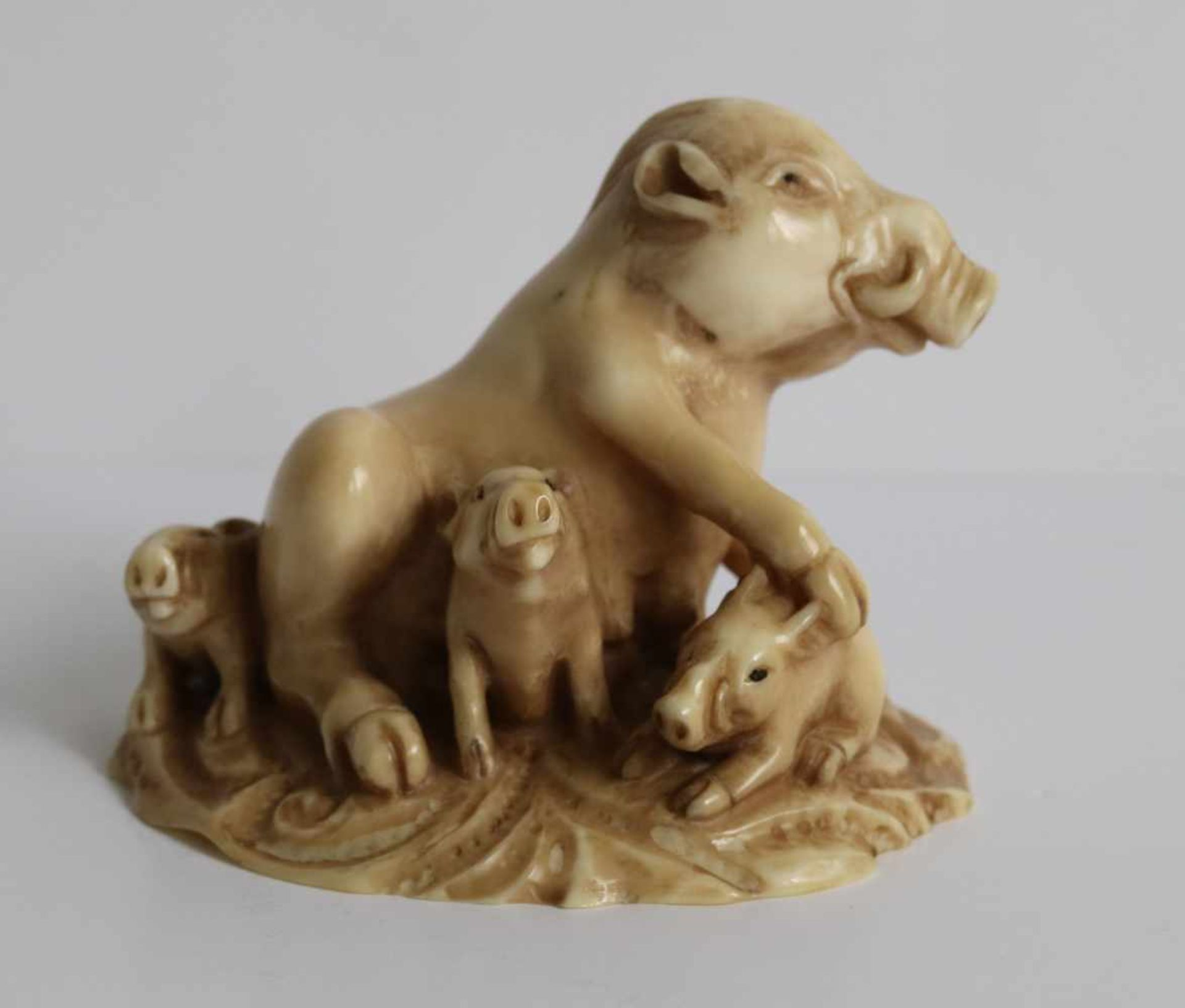 Los 466 - Netsuke Okimono Ivory a wild sow and her cubs Japan, MEIJI period H 3,7 cm fine quality private