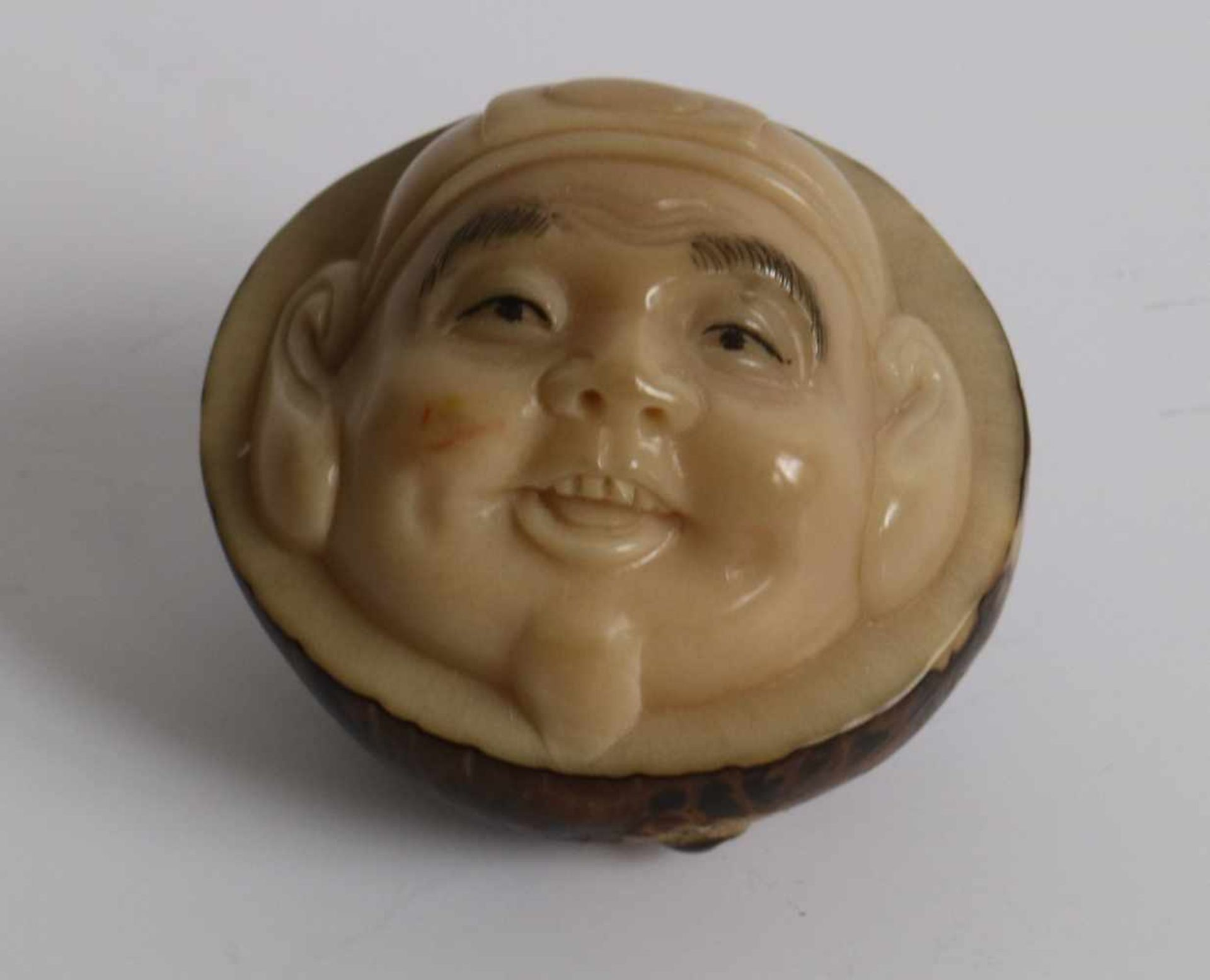 Los 473 - Carved netsuke depicting a Hotei, Made of tagua nut Japan 20th century L 4,2 cm private collection