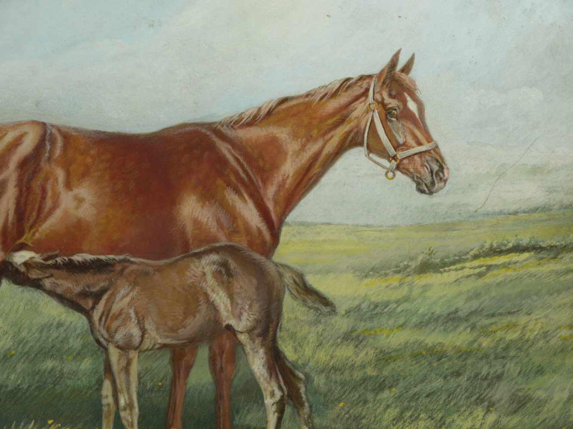 de Swertschkoff, Georges (Sverchkov, Georges) (1872-1957) - Stute mit Fohlen 1934Naturalistisch - Bild 4 aus 5