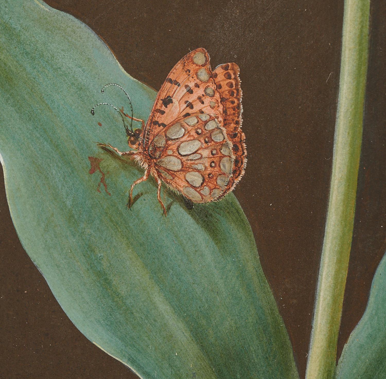 Lot 28 - Barbara Regina Dietzsch, Gouache Painting
