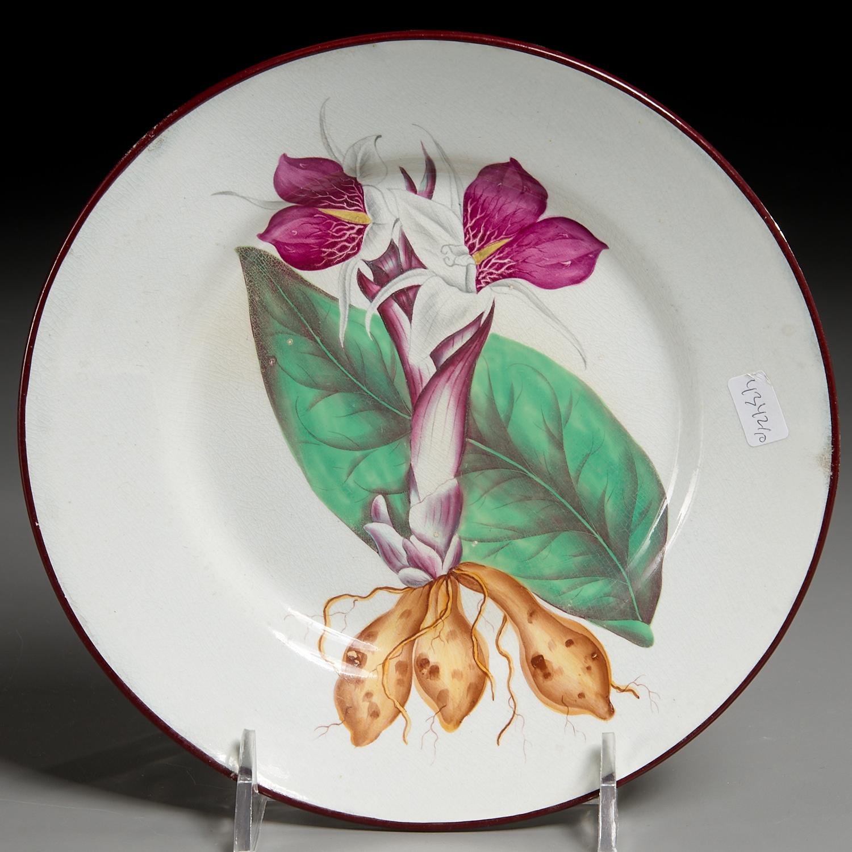 Lot 9 - Set (10) English Botanical Creamware Plates