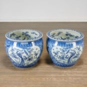 Pair Chinese blue and white porcelain fish bowls
