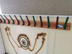 coloured coat hooks
