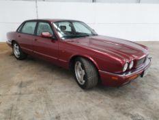 1995 / N Jaguar XJR 4.0