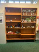 x2 Bookshelves
