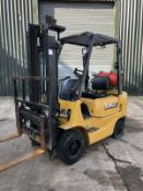 Cat Gas Forklift Truck