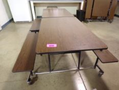 Two Folding Picnic Tables