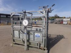 CATTLE WEIGH SCALES/CRUSH (NO VAT)