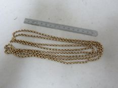 A yellow metal muff chain, stamped 375 to clasp, belcher type link, 160cm approx, 49 grms approx