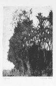 Curio, Sabine(geb. 1950 Ahlbeck/Insel Usedom, lebt in Stolpe/Insel Usedom)1969-1974 Studium an der