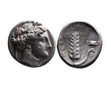 Ancient Greek AR nomos Metapontum