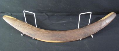 INDIGENOUS AUSTRALIAN ABORIGINAL HARDWOOD BOOMERANG with chip carved decoration, possibly Mulga