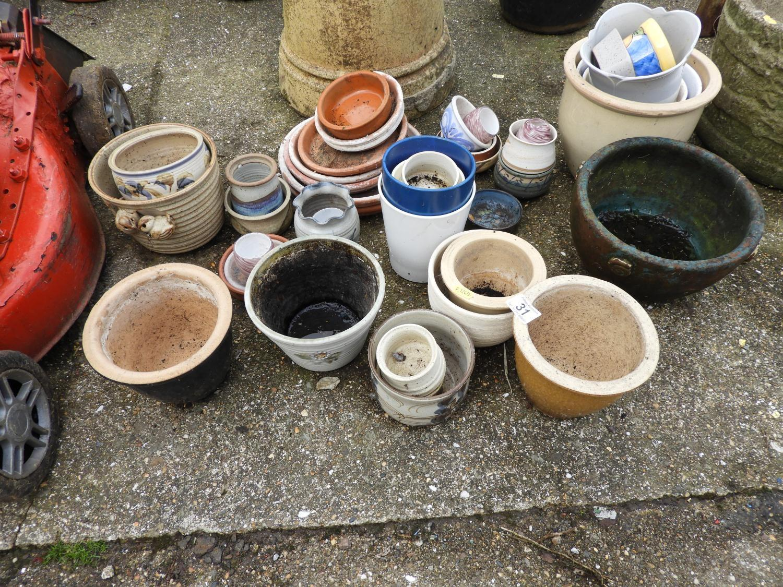 Lot 31 - Quantity of Garden Pots and Garden Chemicals etc