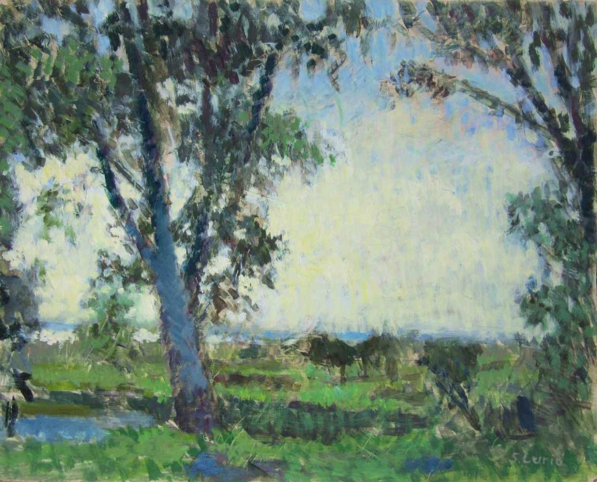Curio, Sabine (1950 Ahlbeck, lebt in Stolpe auf Usedom)