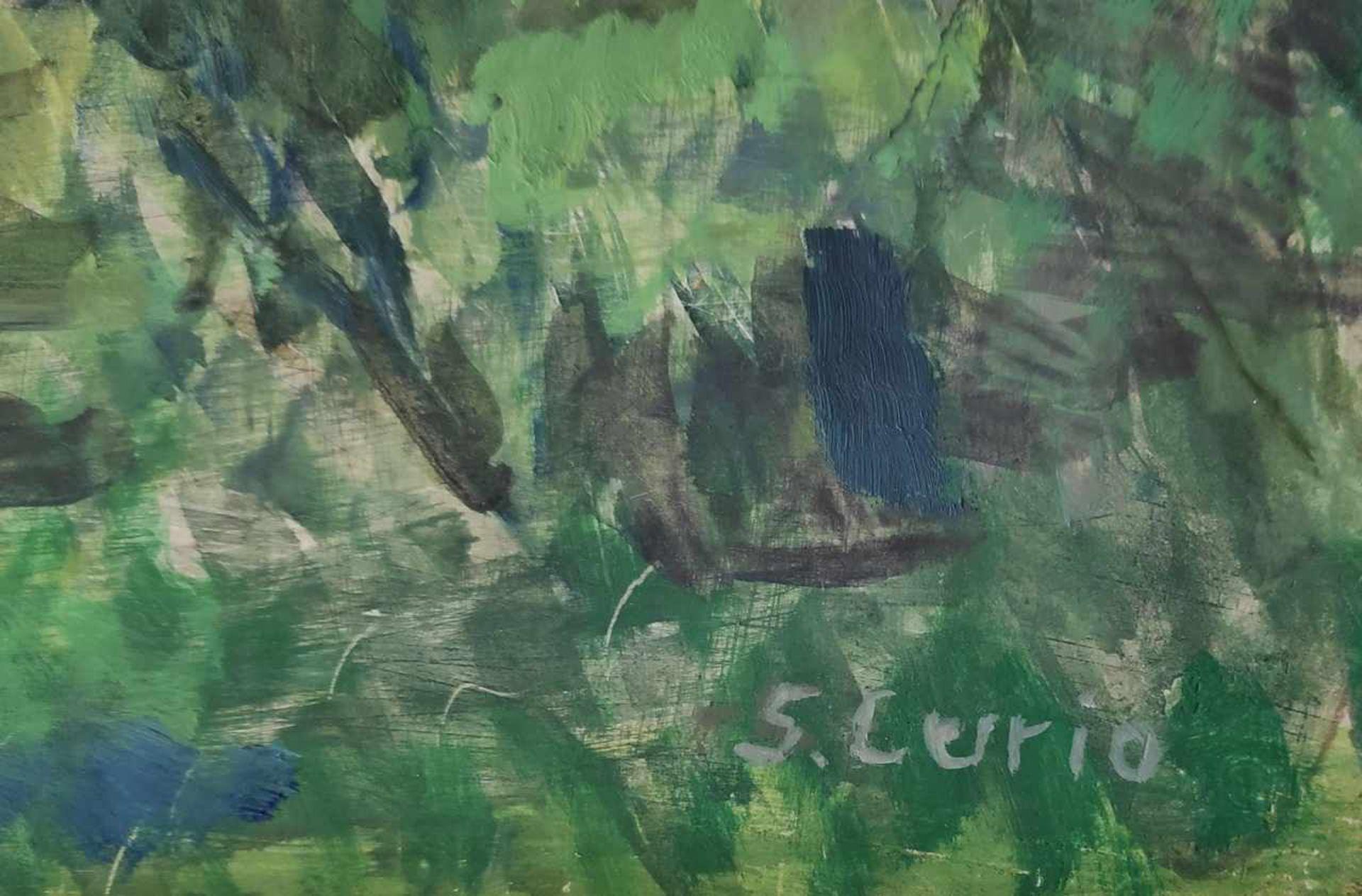 Curio, Sabine (1950 Ahlbeck, lebt in Stolpe auf Usedom) - Bild 3 aus 5