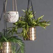 Rocha Hanging Planter
