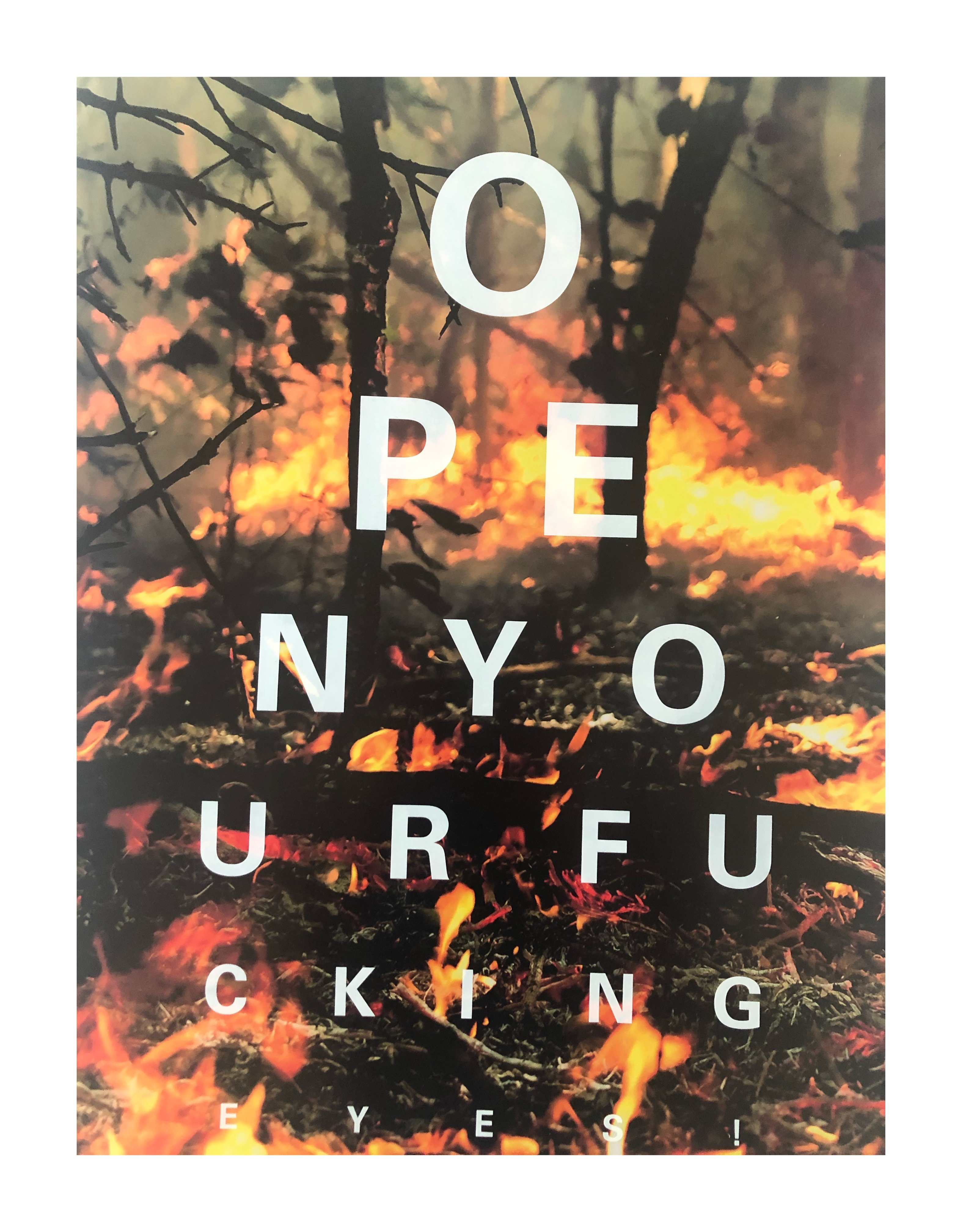 ALEX BUCKLEE- 'EYE TEST'- (CLIMATE CHANGE FIRE)-2019 - Image 2 of 3
