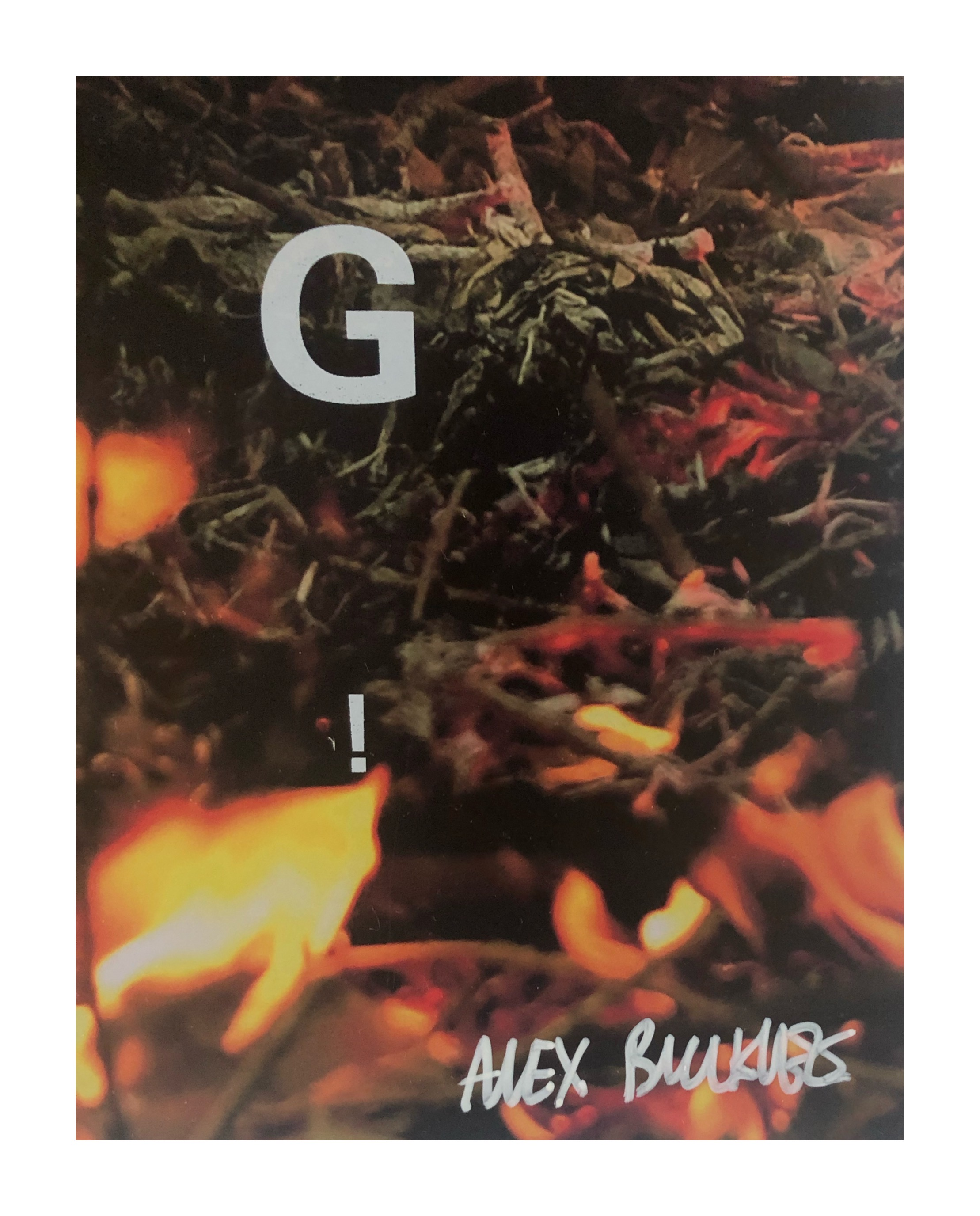 ALEX BUCKLEE- 'EYE TEST'- (CLIMATE CHANGE FIRE)-2019 - Image 3 of 3