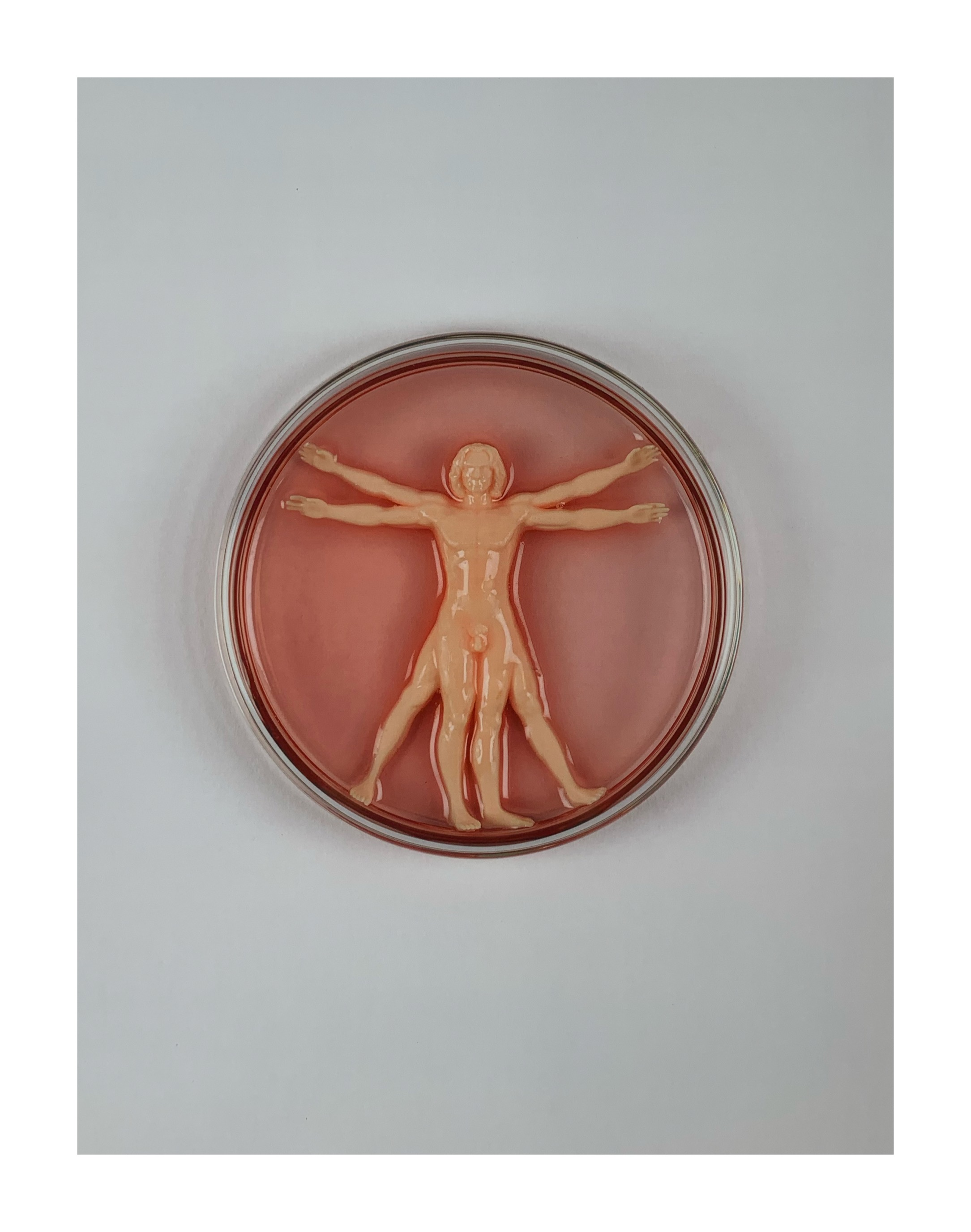 IMBUE 'VITRUVIAN MAN-MADE' - 2020 - Image 2 of 2