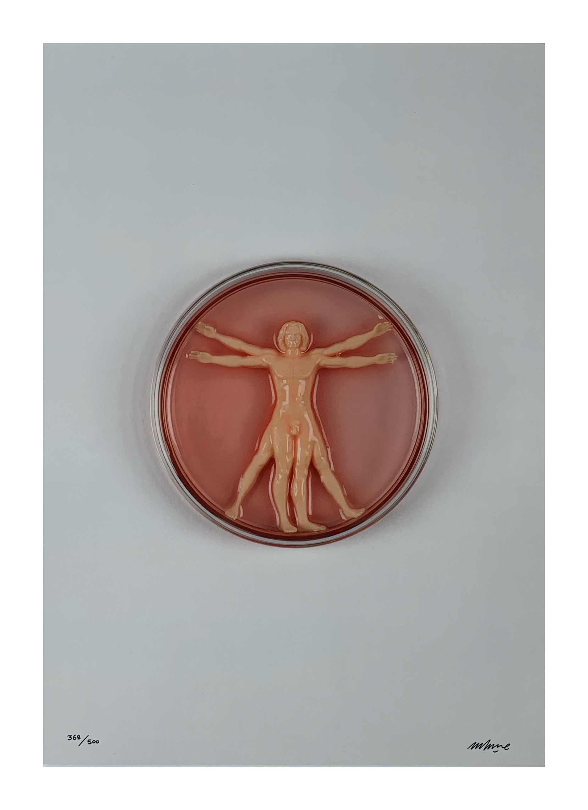 IMBUE 'VITRUVIAN MAN-MADE' - 2020