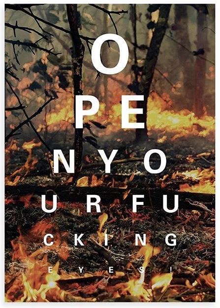 ALEX BUCKLEE- 'EYE TEST'- (CLIMATE CHANGE FIRE)-2019
