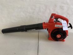 Craftsman Blower (Tested and Working)