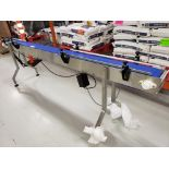 Speedway Stainless Steel Conveyor Section