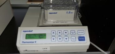 Eppendorf Thermomixer R Dry Block Shaker