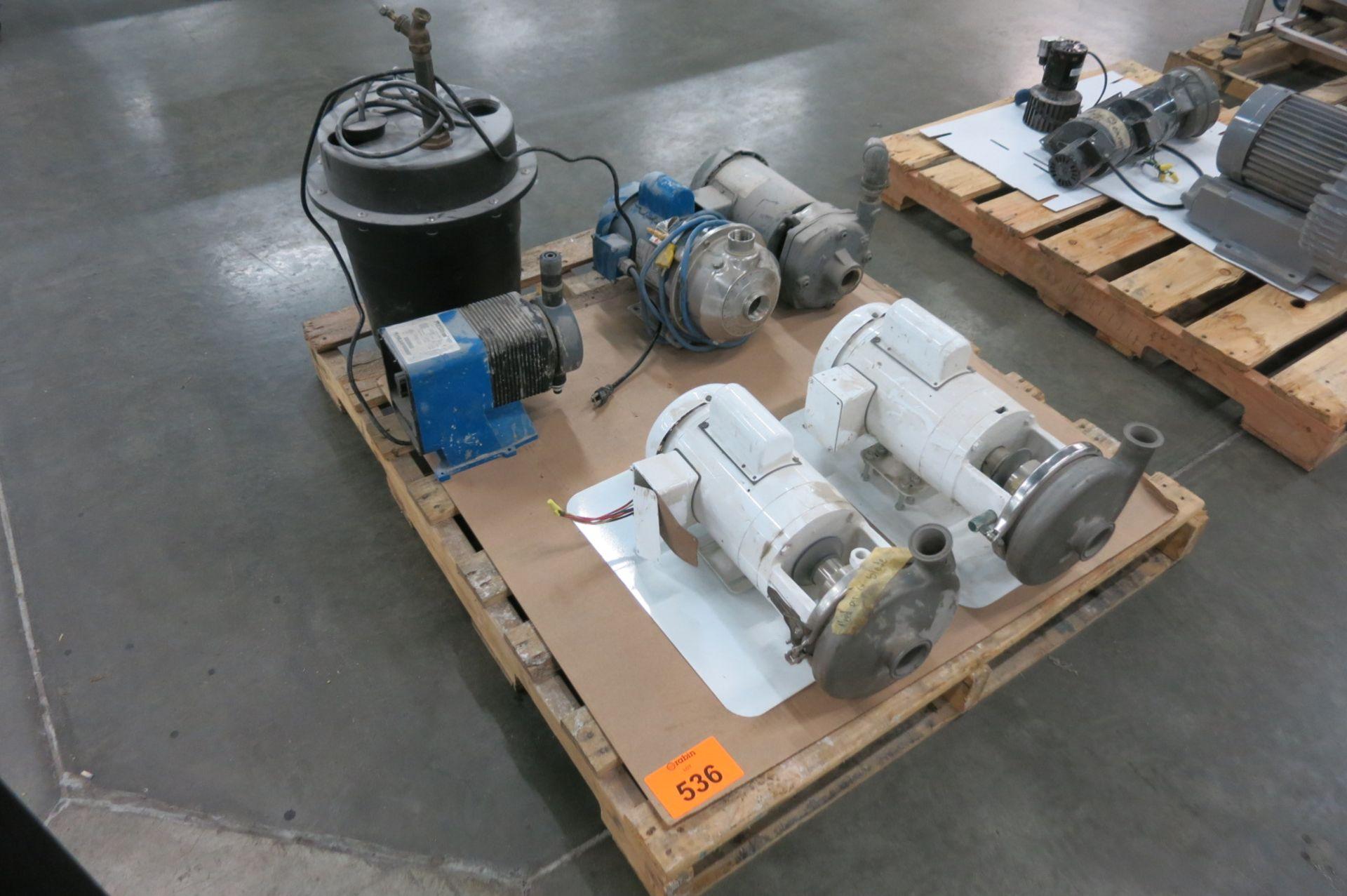 Lot 536 - Pumps