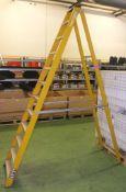 11 Tread step ladder