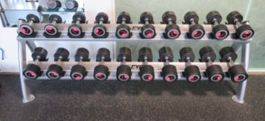 Life Fitness 2kg-20kg 10 Pair Dumbbell Set With Cybex Rack.