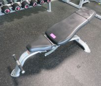 Cybex Height Adjustable Gym Bench.