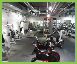 Commercial Strength & Fitness Gym Equipment To Include Brands Cybex, Concept, Impulse, StarTrac, Jordan, Watt Bike & More (Location Oxford)