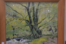 W. A. Holmes (British 20thc) Mossy Tree, Ness Glen, River Doon, acrylic on board, signed lower left,