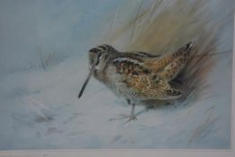 After Archibald Thorburn, Woodcock, limited edition print, 331 (30cm x 40cm), £20-30