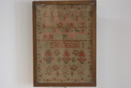 A 19thc framed sampler by Agnes Taylor Sewed This in the Year 1838 with alphabet, plants, peacocks