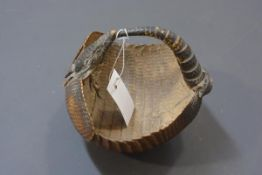 Taxidermy: a 19th century small basket formed from an armadillo. Width 18cm
