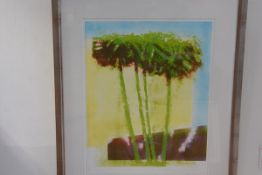 Ronson, Campus Palms, silkscreen print, artist's proof no. 5., signed and dated 1995 (65cm x 49cm)