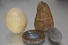 An ostrich egg (h.17cm), an agate dish, a coco pod (l.15cm), and a seed pod (l.19cm)