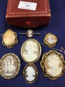A collection of Victorian, Edwardian and modern cameo brooches, including an oval cameo in yellow