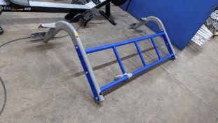 Exigo-UK wall mountable gym frame