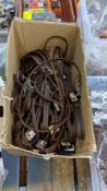Box of dog leads