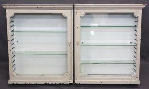 EDWARDIAN MAHOGANY CHEMIST'S CABINETS, a pair, single glazed doors with adjustable interior glass